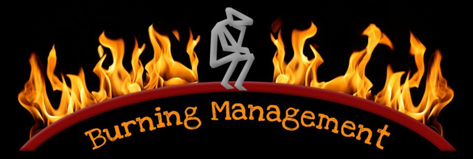 burningmanagementblog